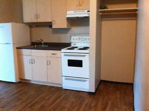 Old Strathcona Bachelor Suite for rent