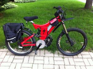 Stolen Specialized BigHit DH FSR E Bike