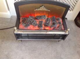Electra Fuel Effect Fire.