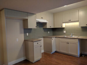 Brand new legal basement apartment in Southend of Guelph