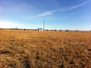 5 Treed Acres. 5 minutes to Strathmore.Mountain View