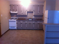 1  Bedroom Apartments For Rent!!!