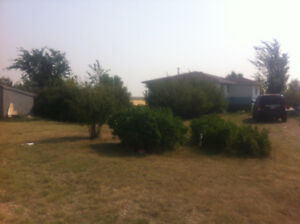 CHEAP! Acreage with two houses, needs a lot of work