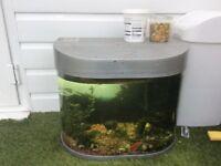 Fish tank 95l and fish