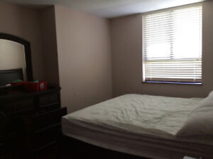 Room or rooms to rent