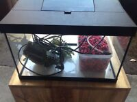 Fish tank complete with pump, filter, gravel and artificial plant. Ready to go