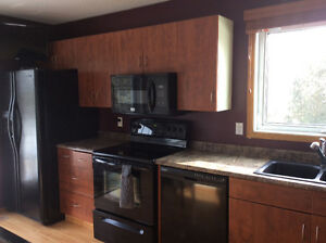 Used kitchen cabinets and counter top for sale