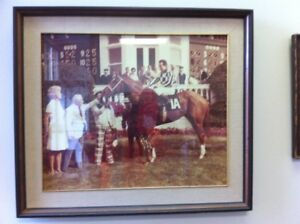 Thoroughbred Horse Racing Photos & Prints Vintage Antique