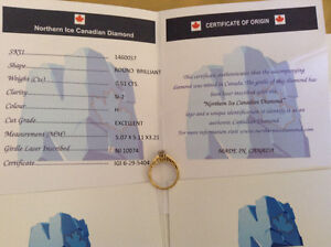 Northern Ice Canadian Diamond Engagement Ring