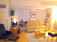 Fully Furnished Studio Opp to Eaton center Available