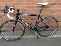Meridia road race carbon forks Road bike