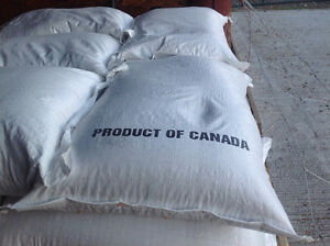 Oats for horses, goats, can deliver, buy 20 bags get 1bag free. Prince George British Columbia image 1