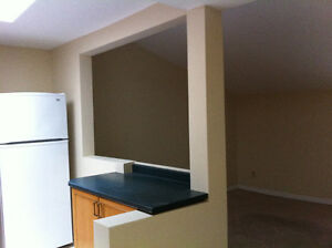 Two Bedroom  downtown Kingston