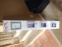 Picture frame growth chart