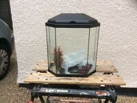 6 Sided complete cool water aquarium fish tank set up