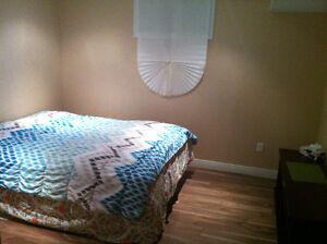 Basement 1 Bedroom + Living - 6 Months Oakville / Halton Region Toronto (GTA) image 8