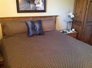 Housse de couette QUEEN,2  cache oreillers, jupe de lit +....