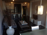 Fully Furnished MONTREAL-GRIFFINTOWN Condo
