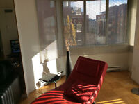 Furnished 2-Bedroom Luxury Apartment Downtown Montreal