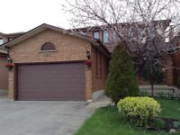 Basement in Weston and Langstaff for rent