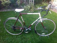"""Retro Raleigh winner road bike 23"""" frame"""