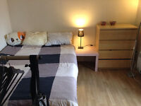 Lovely bright room in Mile-End (URGENT)