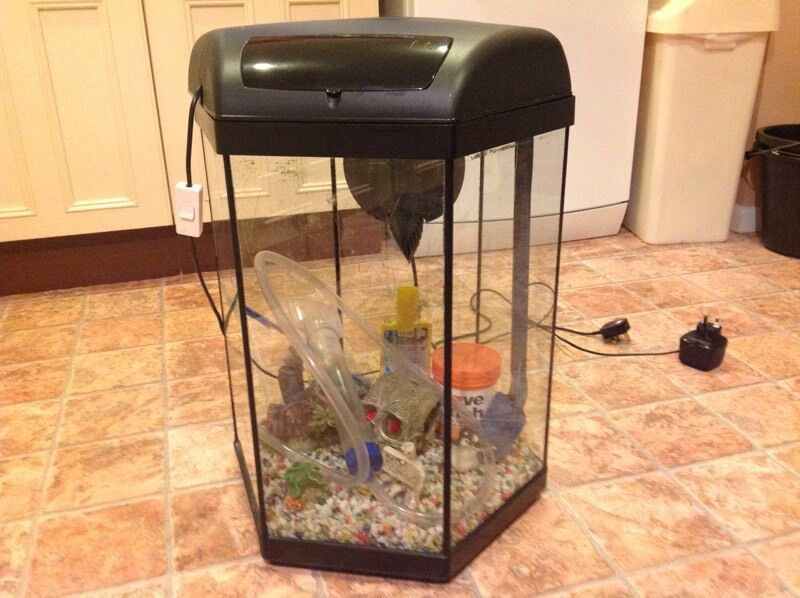 aquael hexagon 60 litre fish tank with light etc in longlevens gloucestershire gumtree