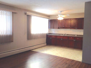 DOWNTOWN LARGE ONE BEDROOM Available August 1, 2017