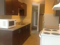 NEWLY RENOVATED 2 BEDROOM SUITE