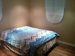 Basement 1 Bedroom + Living - 6 Months Oakville / Halton Region Toronto (GTA) image 7
