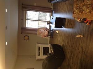 Age Friendly Apartment -Clarenville Area