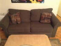 Super comfortable pull out couch with double bed