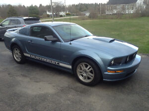 2007 GT Ford Mustang Coupe (2 door)