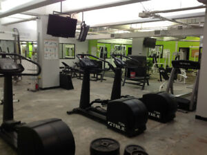 COMPLETE SET OF GYM EQUIPMENT AVAILABLE AS A WHOLE OR BY UNIT