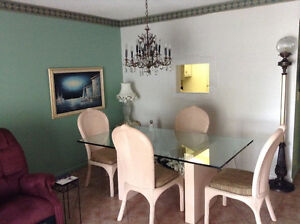 florida large condo for sale 1000s f. 55 plus furnished