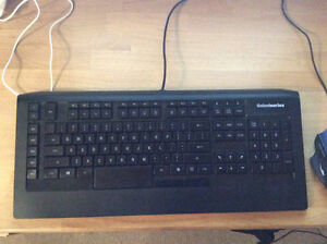 Steelseries APEX RAW Gaming Keyboard and Mouse