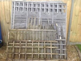 11 old Fence panels for bonfire night