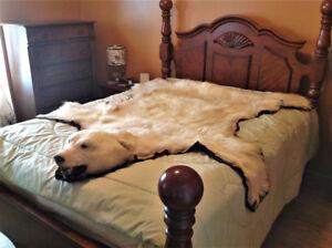 peau d 39 ours kijiji qu bec acheter et vendre sur le site de petites annonces no 1 au canada. Black Bedroom Furniture Sets. Home Design Ideas