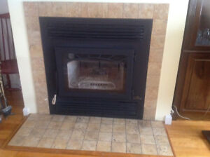 Used Wood Burning Fireplace Napoleon Prestige NZ26