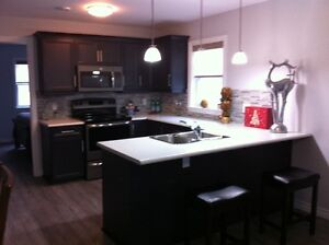 Exceptional Large 1 Bedroom Furnished Apartment Available May 22