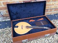 One of a kind: Hand Built Temple Mandolin No.001 Upcycle with Case & Strap