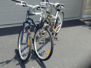 His and Her Adult Bikes