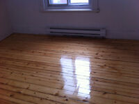 Newly renovated 6½ close to McGill,Cegep Vieux-Mtl,Park,Metro