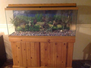 55 Gallon Aquarium with Stand and Filter