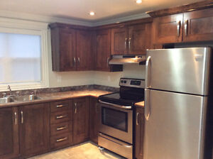 Fully Furnished Executive Downtown Property