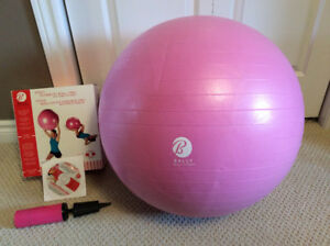 Bally Fitness 65cm Stability Ball Pro (with weight resistance)