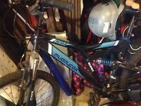 18 speed muddy fox mountain bike. (Mens)