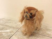Steiff -Peky Dog