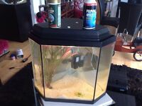 Fish tank in glass triangular 25 litres