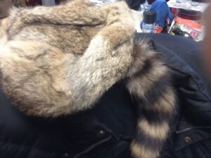 NEW RACOON HAT604-442-9219 THANKS